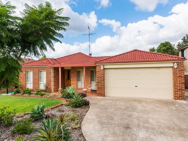 10 Lucas Street, Emu Plains, NSW 2750