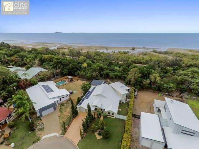56 Livistonia Close, Bushland Beach, Qld 4818