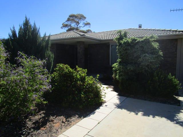 23 Cooper Street, Berri, SA 5343