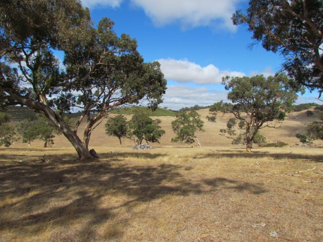Lot 1 Blackmore Road, Strathalbyn, SA 5255