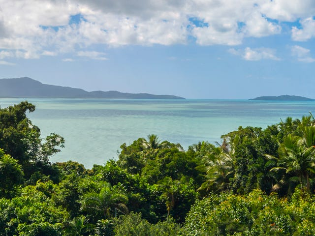 1297 Mossman-Daintree Rd, Rocky Point, Qld 4873