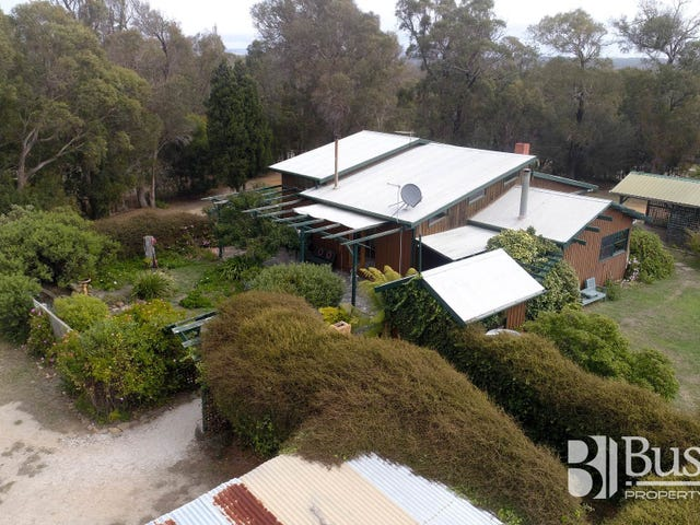 11 Camm Court, Bridport, Tas 7262