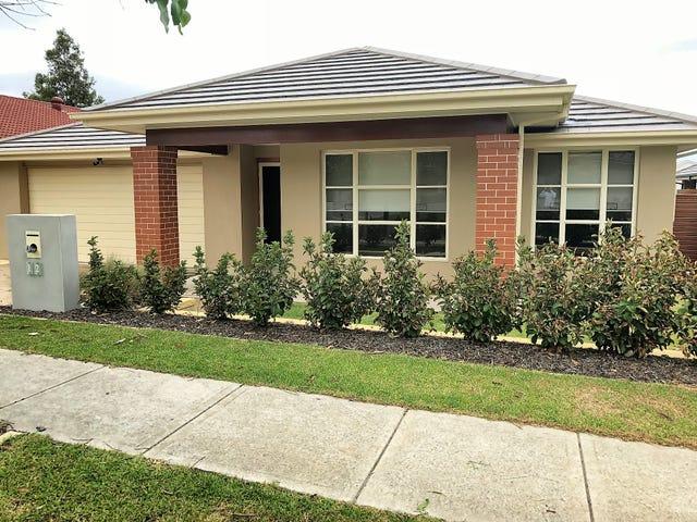 12 Ivory Street, The Ponds, NSW 2769