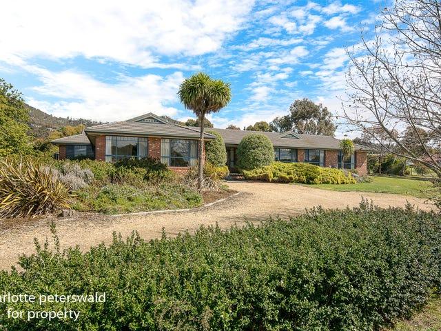 119 Lynrowan Drive, Acton Park, Tas 7170