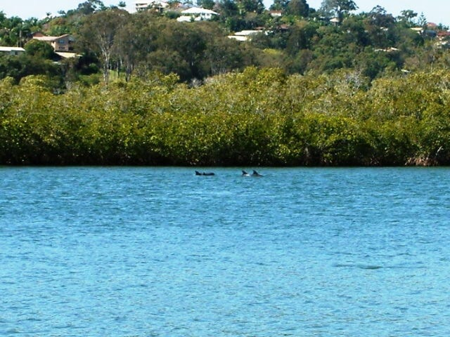 39 Sunset Boulevarde, Tweed Heads West, NSW 2485