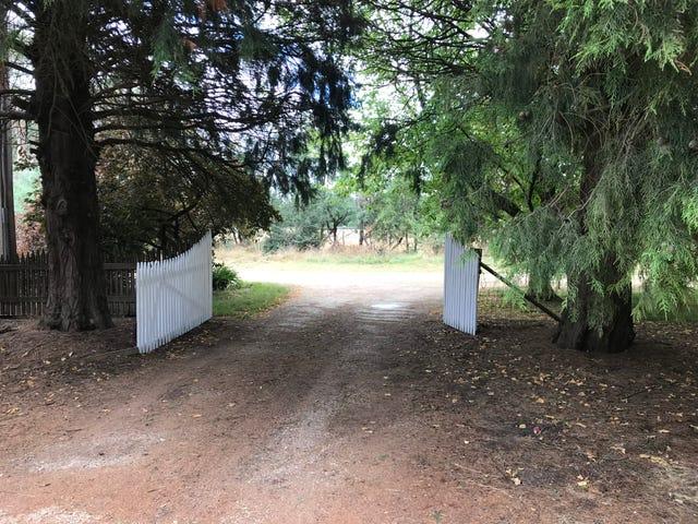253 Two Hills Road, Glenburn, Vic 3717