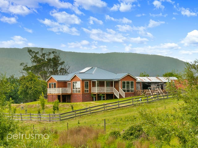343 Top Swamp Road, Lachlan, Tas 7140