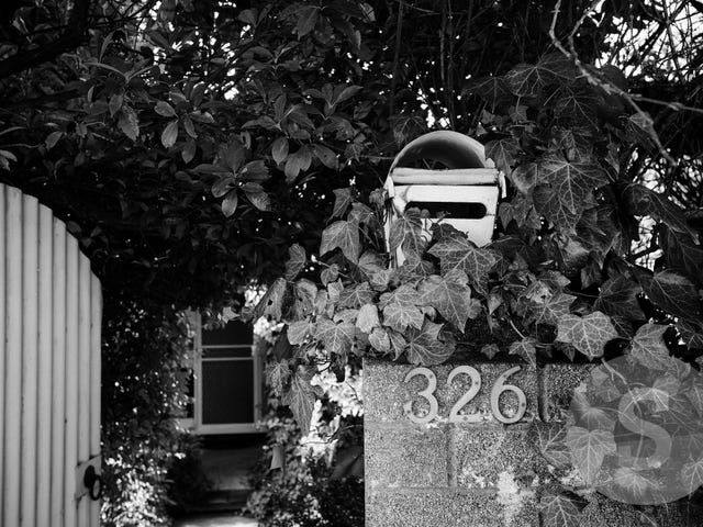 326 West Tamar Road, Riverside, Tas 7250
