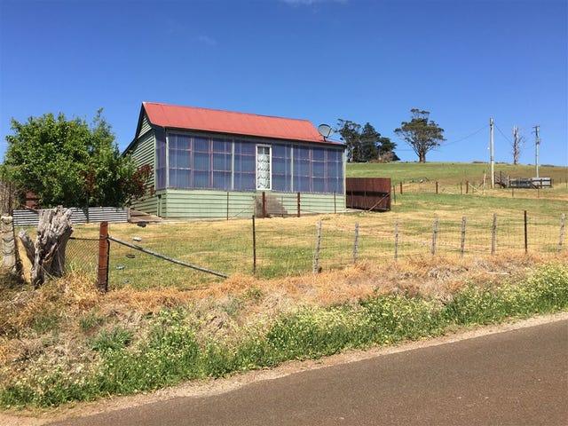 97 Winnaleah Rd, Winnaleah, Tas 7265