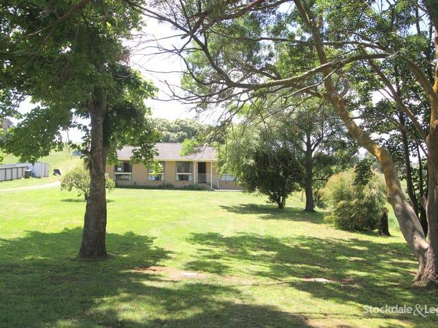 157 Boolarra South - Mirboo North Road, Mirboo North, Vic 3871