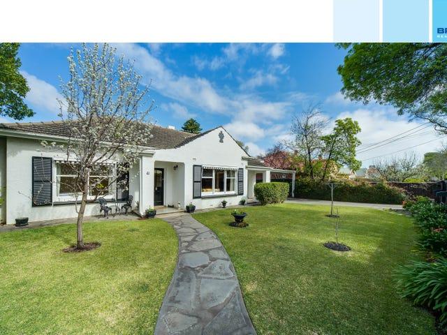 41 North Street, Collinswood, SA 5081