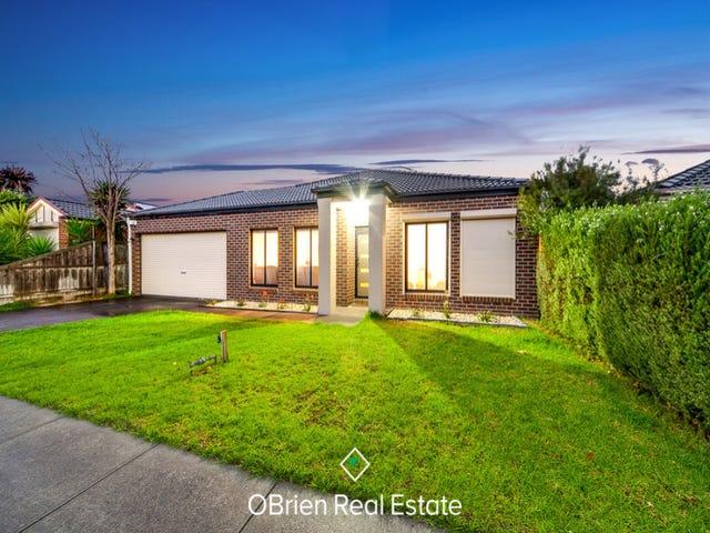 13 Tulip Grove, Cranbourne, Vic 3977
