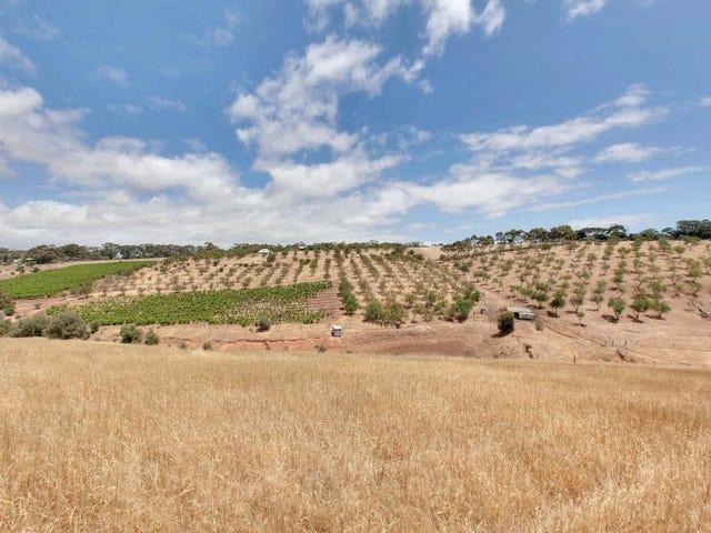 219 Upper Penneys Hill Rd, Onkaparinga Hills, SA 5163