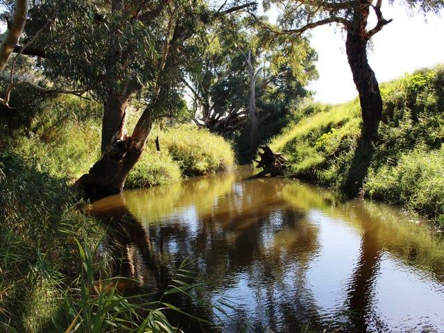 224 Burnlea Road, Langhorne Creek, SA 5255