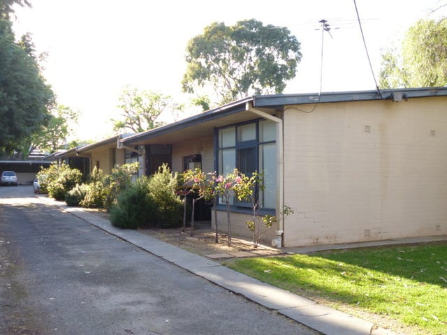 5/56 Queen Street, Norwood, SA 5067