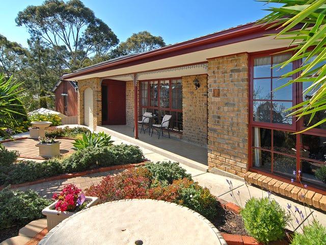 1 Hockley Terrace, Athelstone, SA 5076