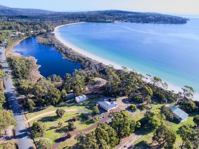 218 White Beach Road, White Beach, Tas 7184