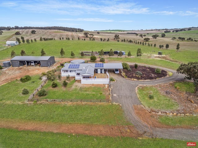 293 River Road, Kapunda, SA 5373