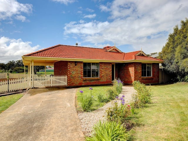 19 Michelmore Drive, Meadows, SA 5201