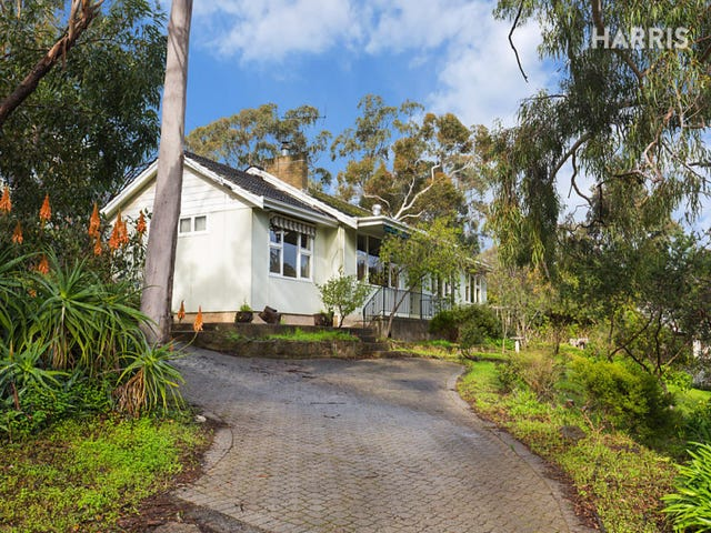 21 McNamara Road, Coromandel Valley, SA 5051