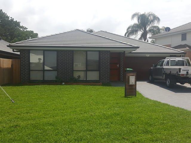 22 Nettleton Street, Elderslie, NSW 2570