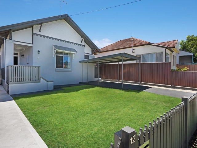 12 Robert Street, Mayfield, NSW 2304