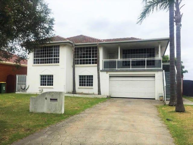 11 Larkview Avenue, Chester Hill, NSW 2162