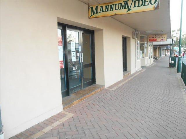 79B Randell Street, Mannum, SA 5238