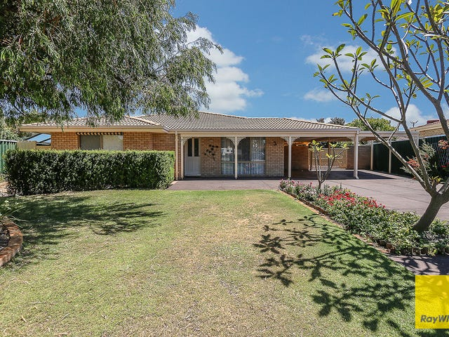 7 Mallee Place, Morley, WA 6062