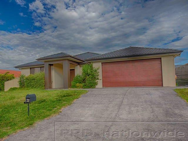 20 Acer Terrace, Thornton, NSW 2322