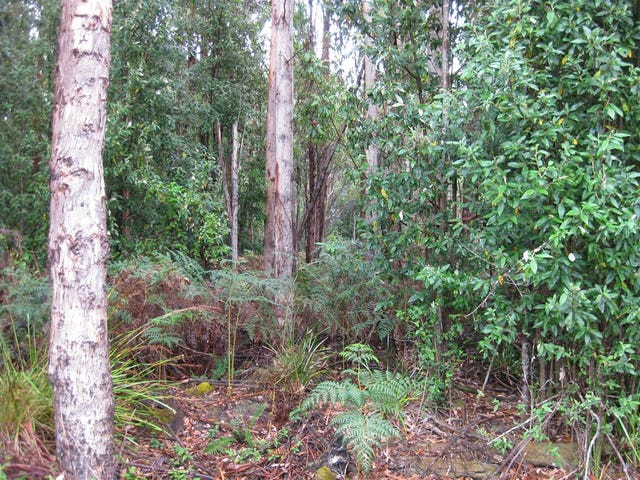 . Buckbys Road, Montagu, Tas 7330