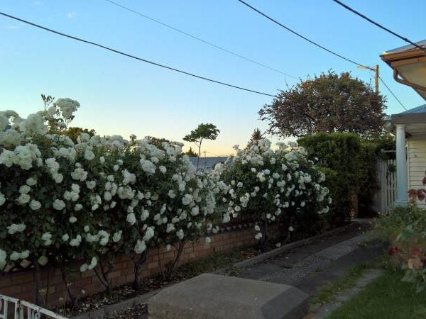 48 Gwelo Street, West Footscray, Vic 3012