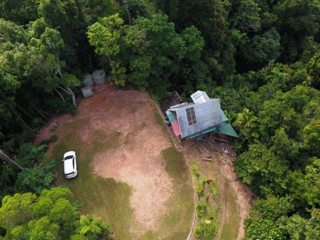 270 Kauri Close, Daintree, Qld 4873