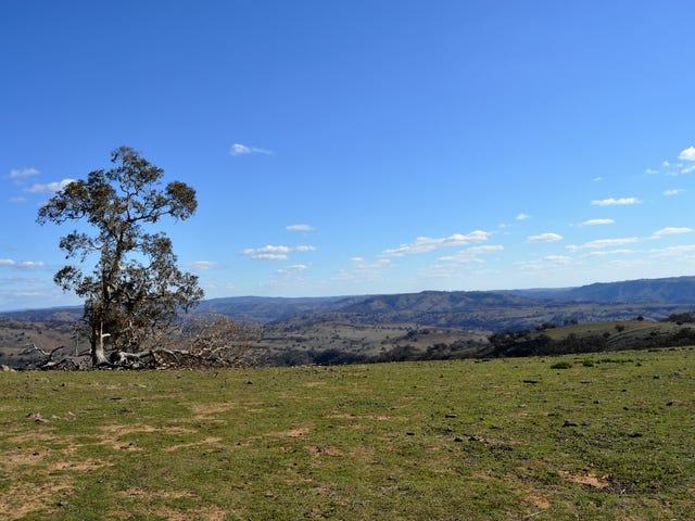 40 Triamble Road, Triamble, NSW 2850