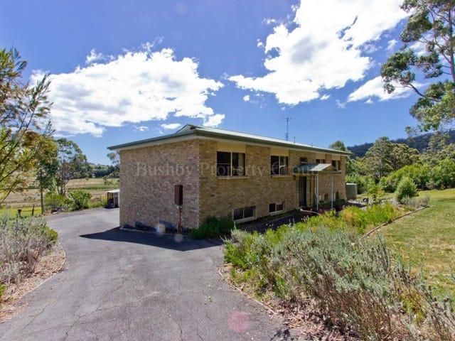 389 Leam Road, Hillwood, Tas 7252