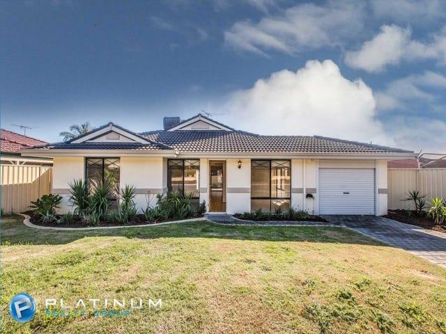 59 Turquoise Loop, Banksia Grove, WA 6031