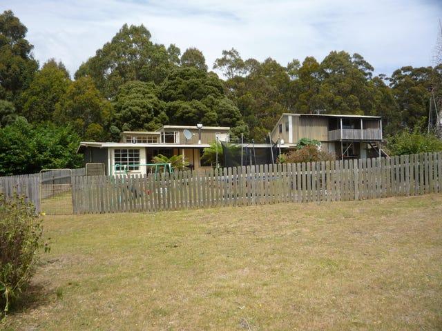 1094 Patersonia Road, Patersonia, Tas 7259