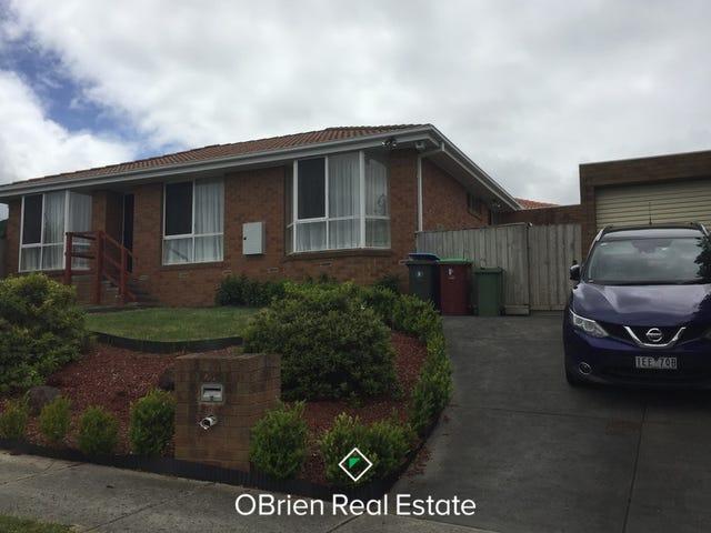 28 Preston Avenue, Endeavour Hills, Vic 3802