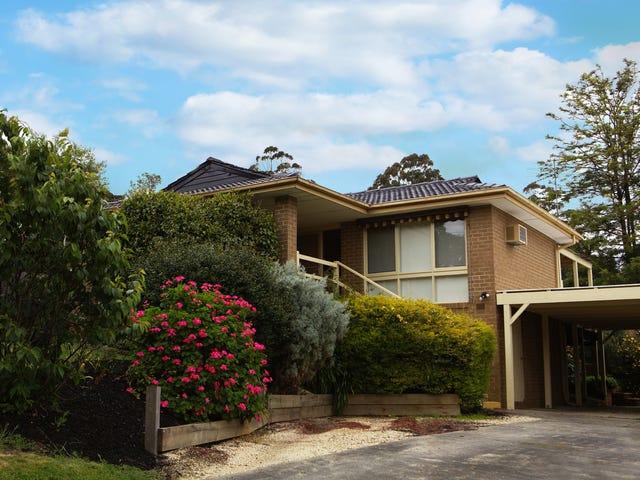 115 Rolling Hills Road, Chirnside Park, Vic 3116