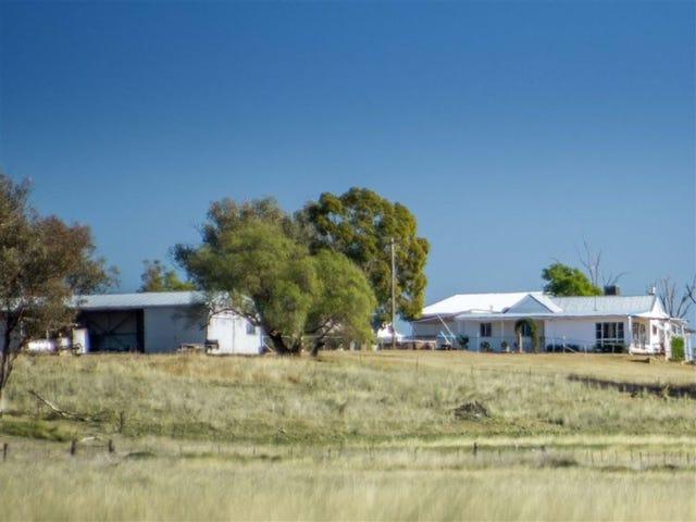 450 Heiligmans Lane, Tamworth, NSW 2340