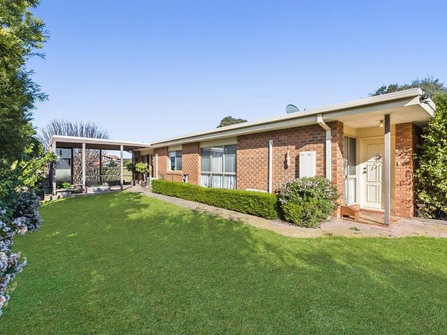 33 Colac Grove, Belmont, Vic 3216