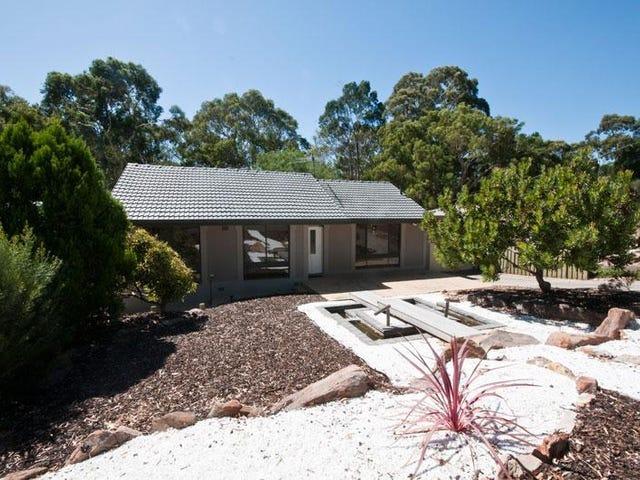 17 Bowen Road, Tea Tree Gully, SA 5091