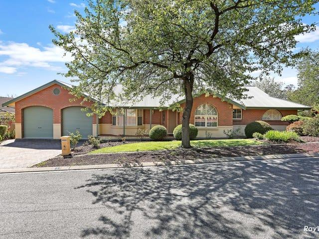 40 Angove Park Drive, Tea Tree Gully, SA 5091