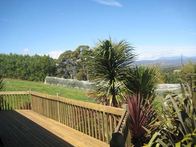14 Atkinsons road, Grindelwald, Tas 7277