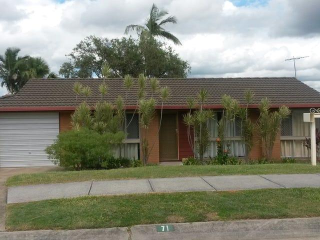 71 Basswood, Algester, Qld 4115