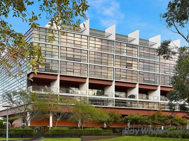 207A/264 Anzac Pde, Kensington, NSW 2033