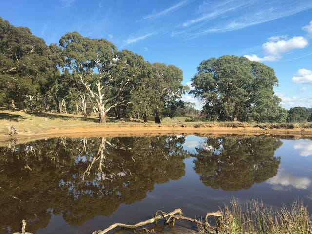 Section 1449 Archer Hill Road, Bugle Ranges, SA 5251