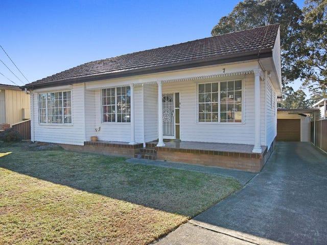 7 Treloar Crescent, Chester Hill, NSW 2162