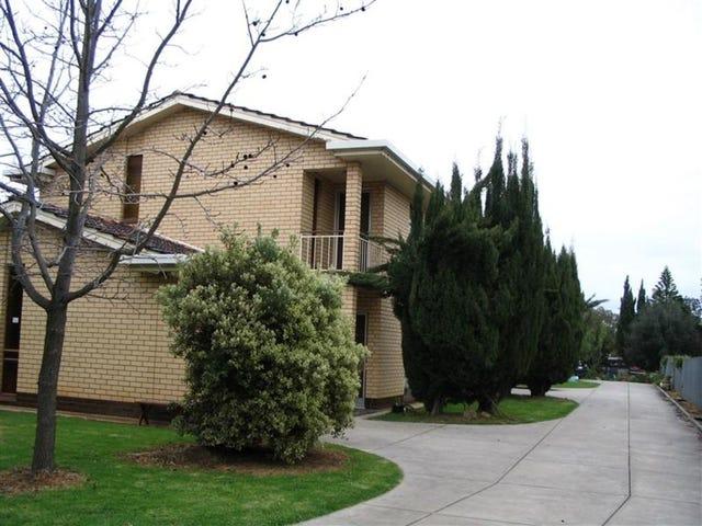 1/3 Birdwood Avenue, Frewville, SA 5063