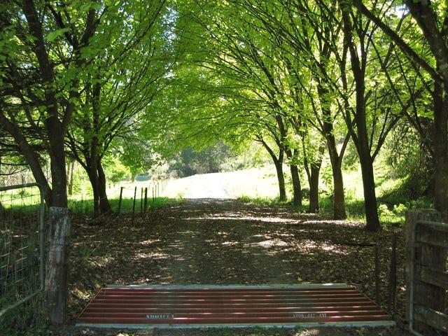 61B Priddles Lane, Wattamolla, NSW 2535